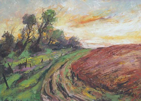 chemin à travers champs à la roche sur yon